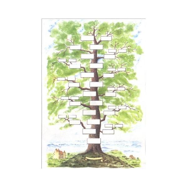 Arbre genealogique gratuit a imprimer - Imprimer arbre genealogique ...